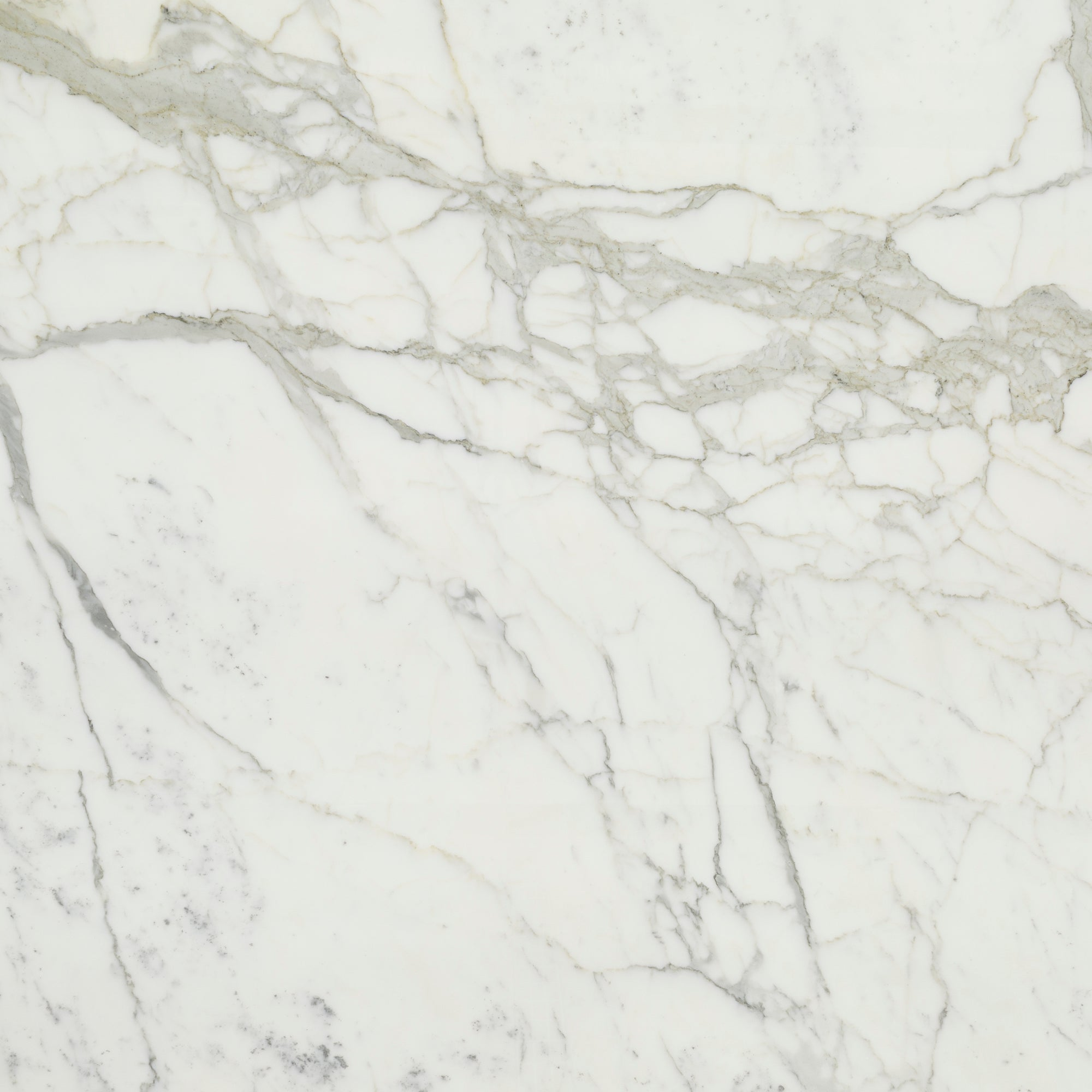 2cm Calacatta Gold A1 Select Marble Swatch Card  Polished Samples Slab product photo