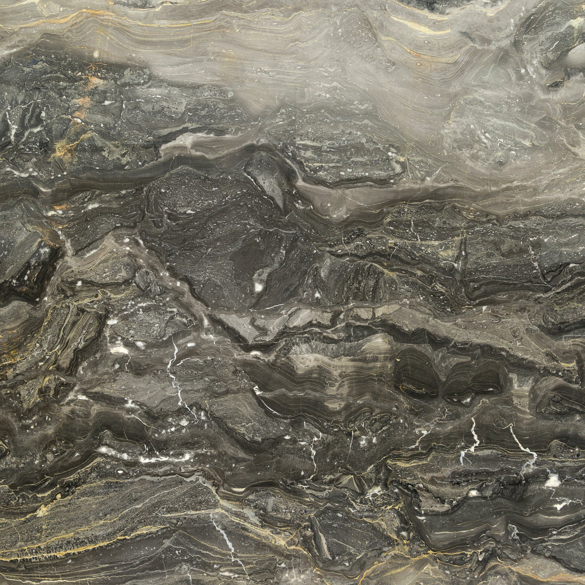 Dark Arabescato Orobico Marble Swatch Card  Polished Samples 3cm Slab product photo