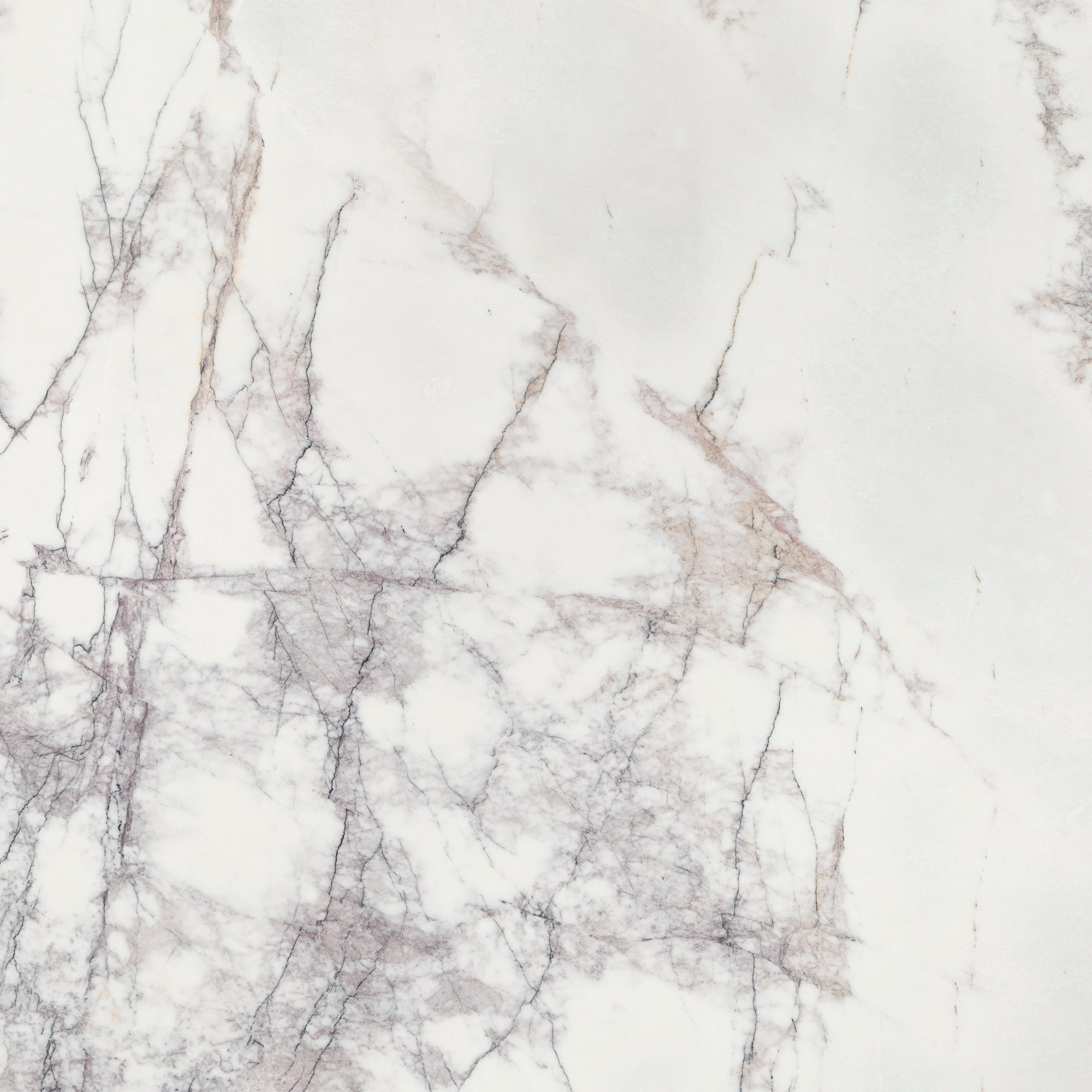 2cm Lilac Marble Swatch Card  Polished Samples Slab product photo