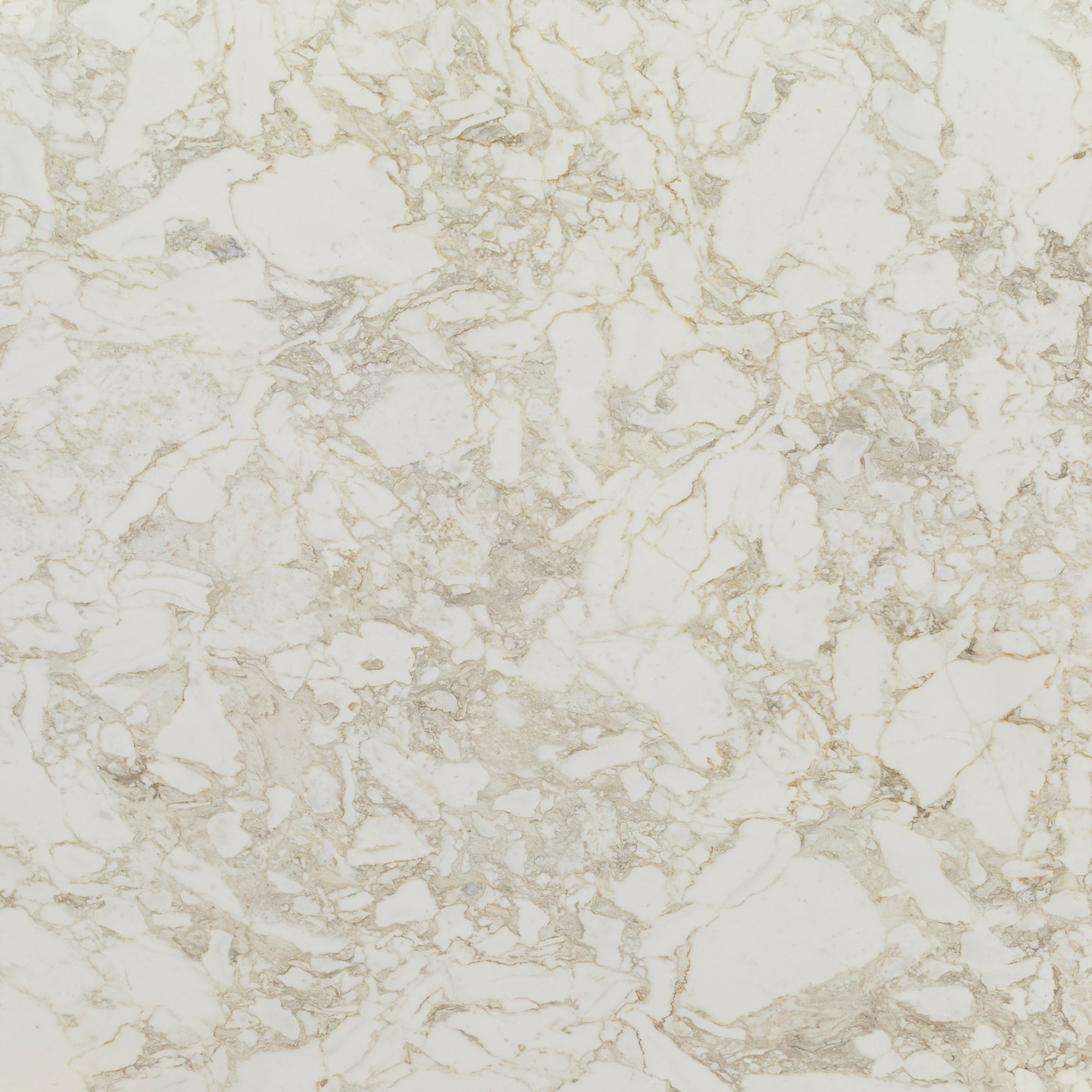 2cm Mediterraneo Marble Swatch Card  Polished Samples Slab product photo