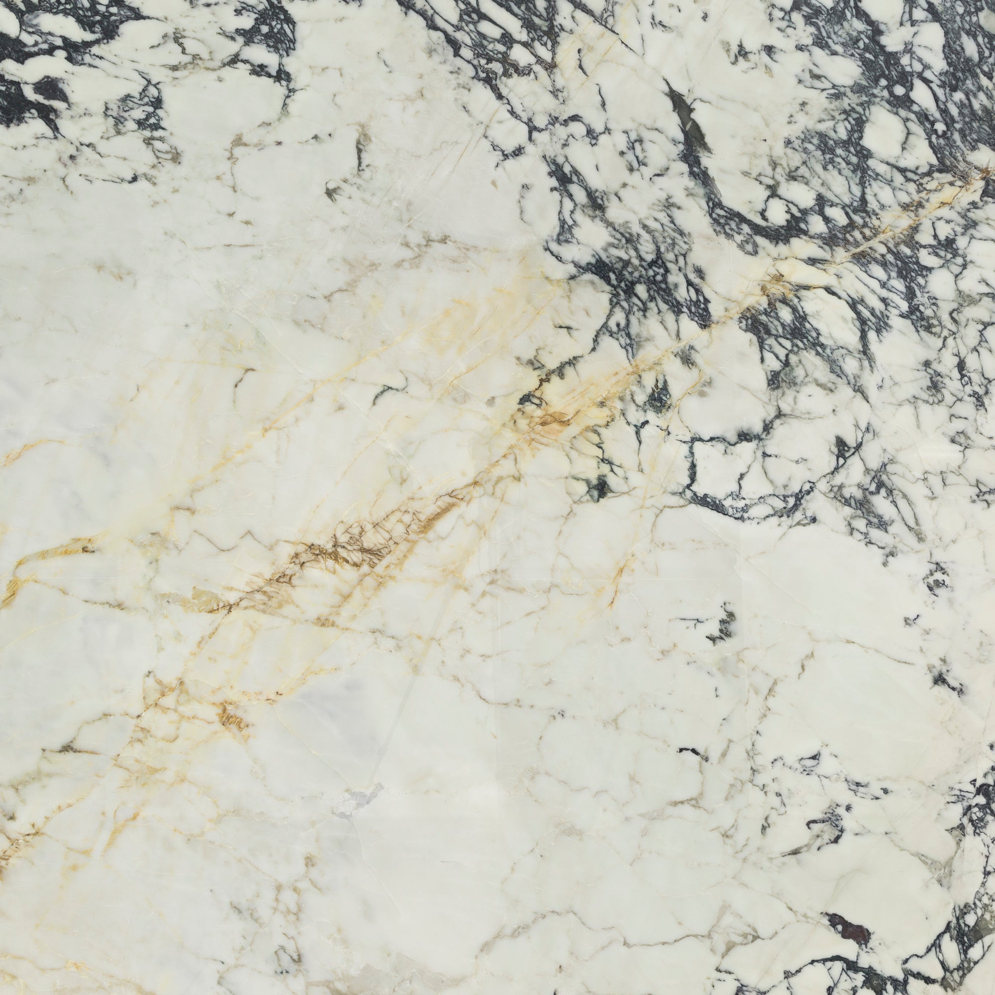 2cm Paonazzo Marble Swatch Card  Polished Samples Slab product photo