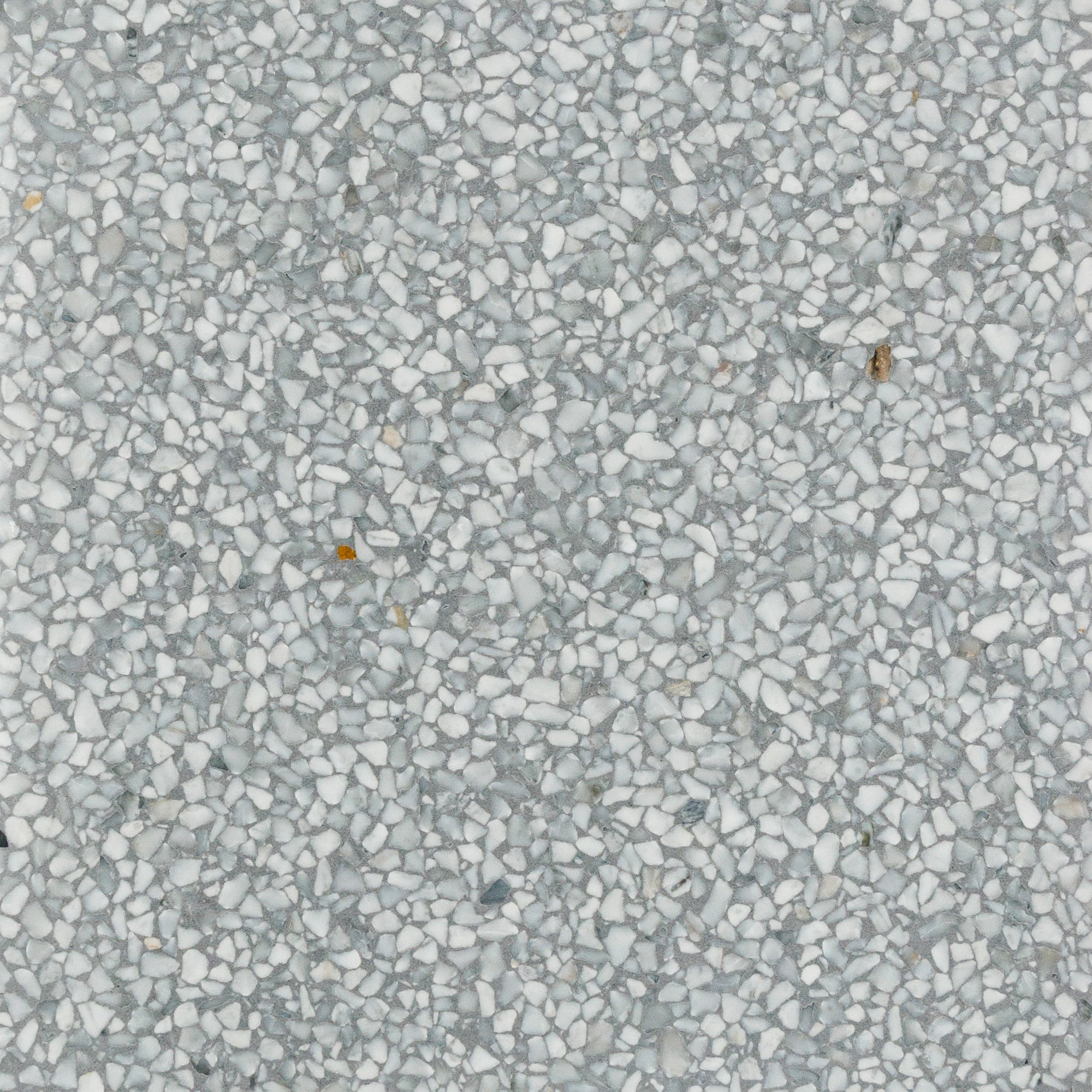 Venezia Terrazzo Light Grey Swatch Card  Honed Samples product photo