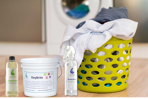 All Natural Cleaning Kit + OxyBrite Natural Detergent