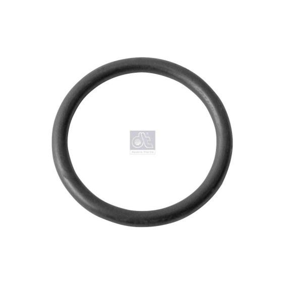 DT O-RING 4.20313-SAJID Auto Online