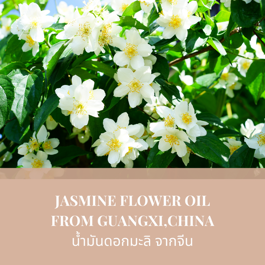 Natural Jasmine Skincre & Body Oil - MIJEP