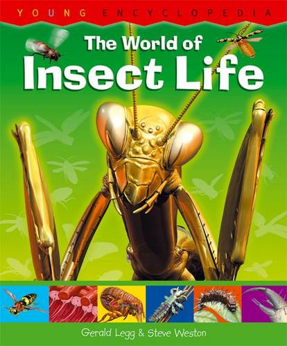 The World of Insect Life