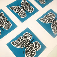 Studio Visit: Screen Printing my Butterfly Print Collection