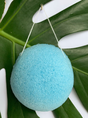 Blueberry Konjac Sponge