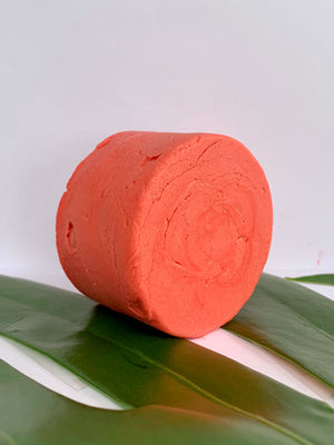 Nourish – Shampoo Bar