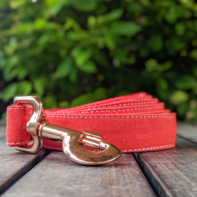 Fuego Red Dog Leash Rose Gold Collection