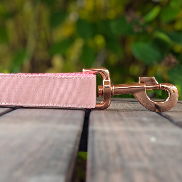 Pink Champagne Dog Leash Rose Gold Collection