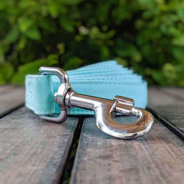 Aqua Getaway Dog Leash Silver Collection