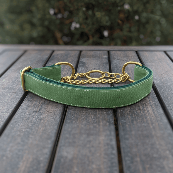 Evergreen Martingale Dog Collar Gold Collection
