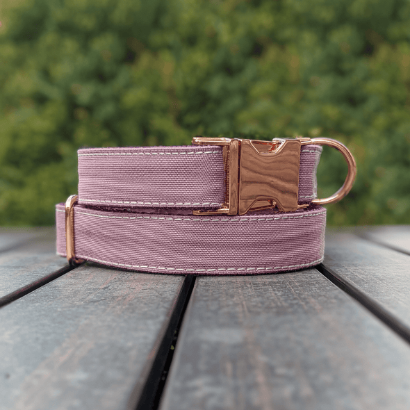 Amethyst Dog Collar Rose Gold Collection