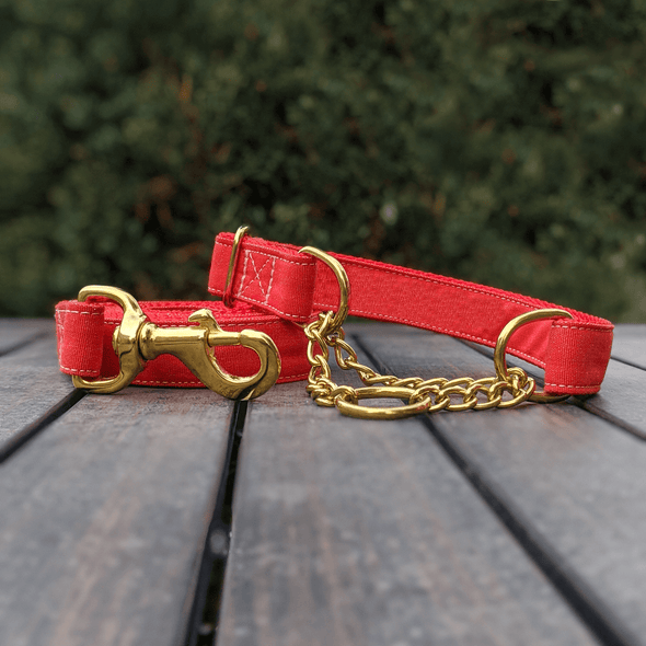 Fuego Red Dog Leash Gold Collection