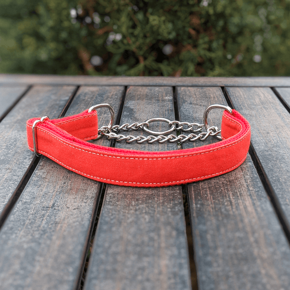 Fuego Red Martingale Dog Collar Silver Collection