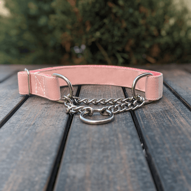 Pink Champagne Martingale Dog Collar Silver Collection