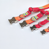 Strawberry and Orange Popsicle Dog Collar Silver Collection