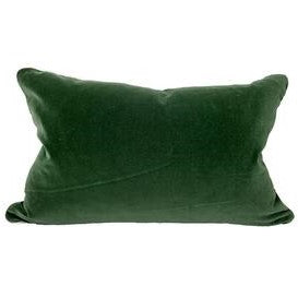 Green Basil Velvet Pillow