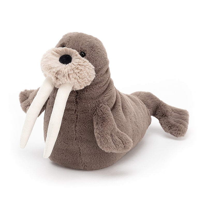 Jellycat - Little Willie Walrus - Soft Toy
