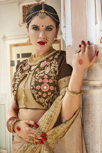 Bhelpuri Brown & Beige Georgette And Raw Silk Embroidered Designer Party Wear Saree with Embroidered Banglori Silk Blouse Piece