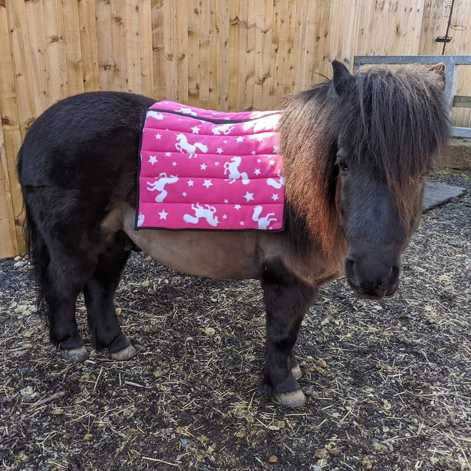 Unicorn saddle pads/fleece numnahs