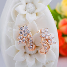 Load image into Gallery viewer, Elegant 18K Rose Gold Filled Zircon Fine Earrings