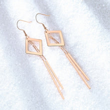 Load image into Gallery viewer, 2019 new Top trendy geometric earrings for woman