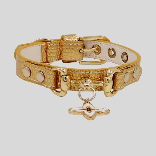 Handmade Gold Leather Pet Collar - LittleCutiePaws