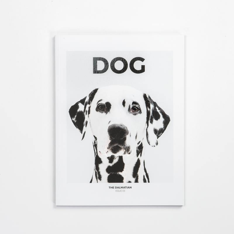 DOG magazin ∣ 3 ∣ Dalmata Urban Fauna