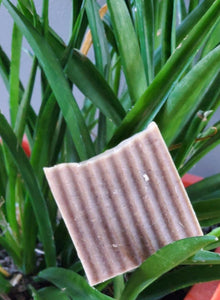 Fierce Exfoliation Bar