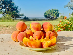 Pre-order Tree-Ripe Fredericksburg Peaches (available all summer starting  in May/June)