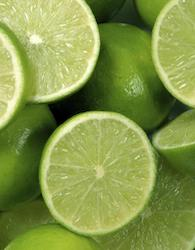 Persian Lime Oil