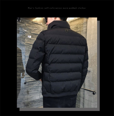 Cotton-padded Clothes New Style Trend down Jacket Cotton-padded Sweatshirts