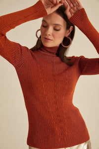 Ribli Full Turtleneck Sweater Brown Pullover