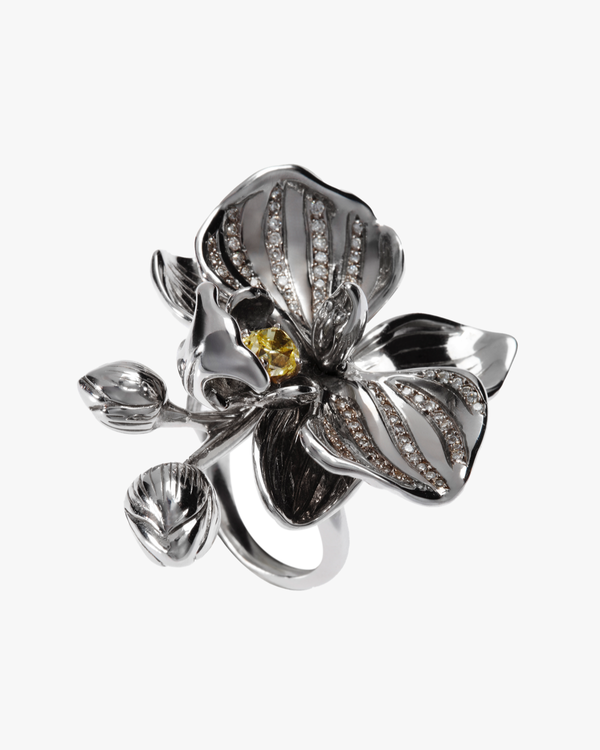 The Orchid Ring