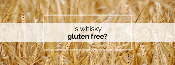 Is whisky gluten free