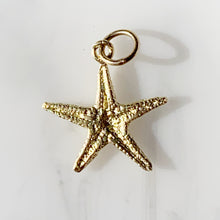 Load image into Gallery viewer, Starfish Charm