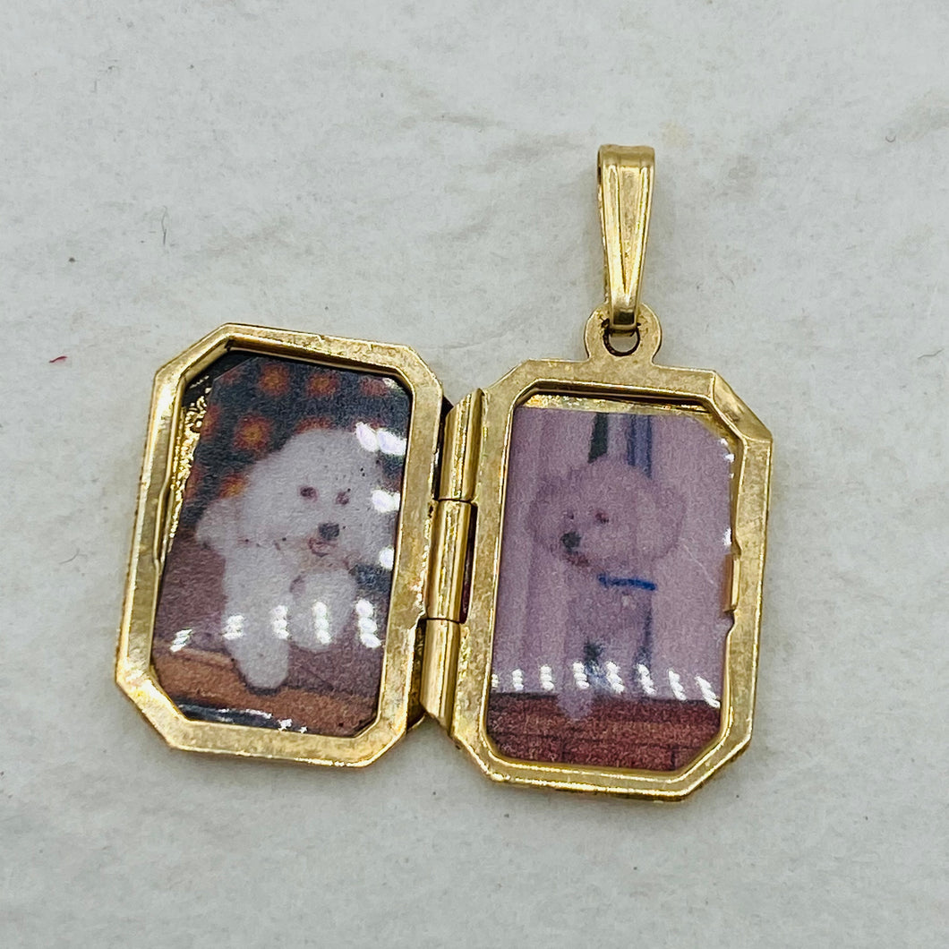 Poodles Babies Locket