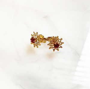 Red Stone Earring Studs
