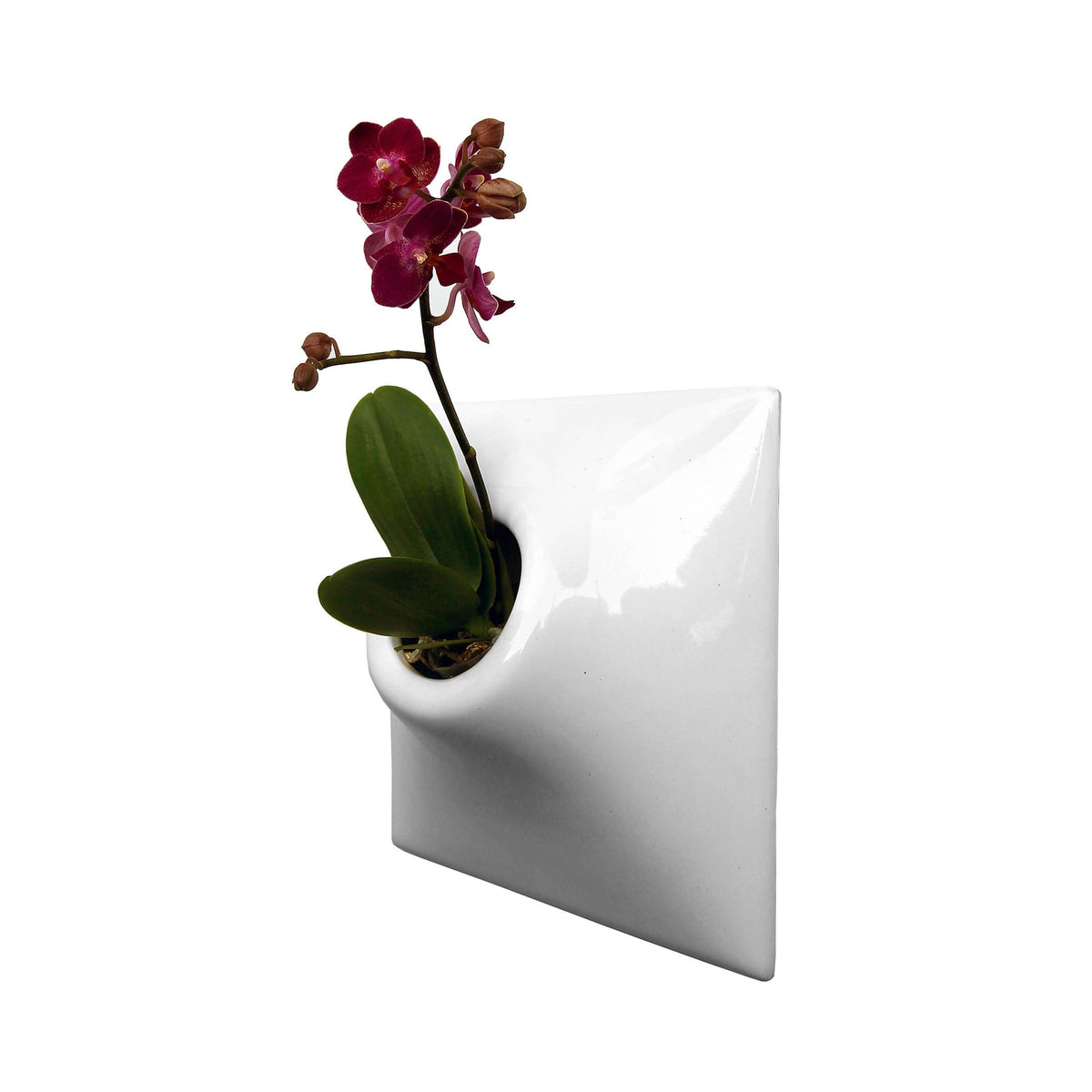 "Node 9"" Wall Planter White"