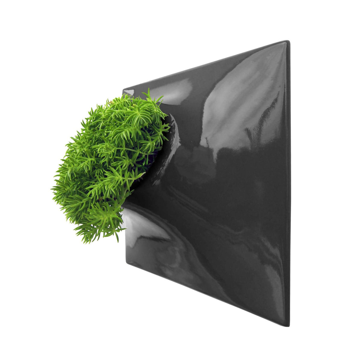 "Node 12"" Wall Planter Dark Gray"
