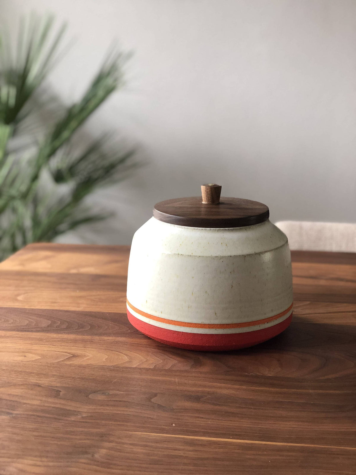 Palm Springs Kitchen Canister #1