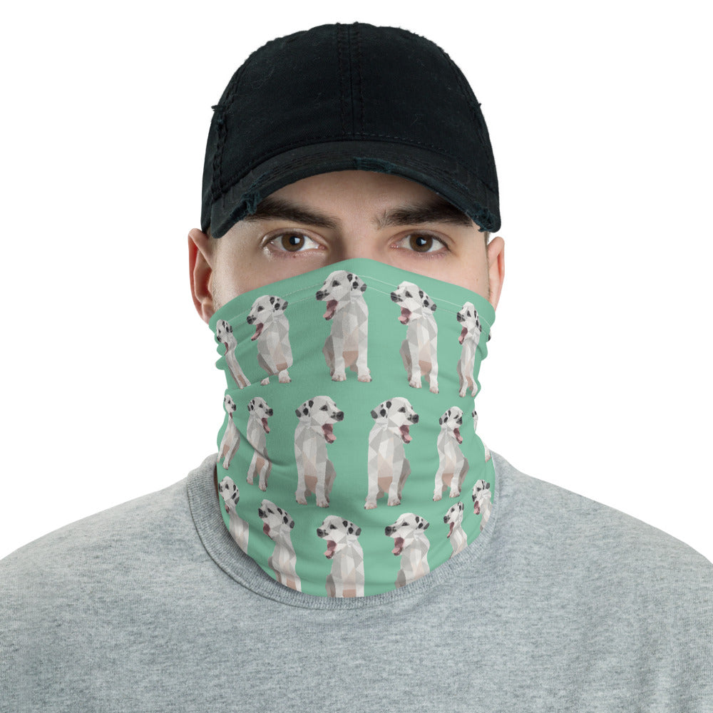 Neck Gaiter - Animal Spandex