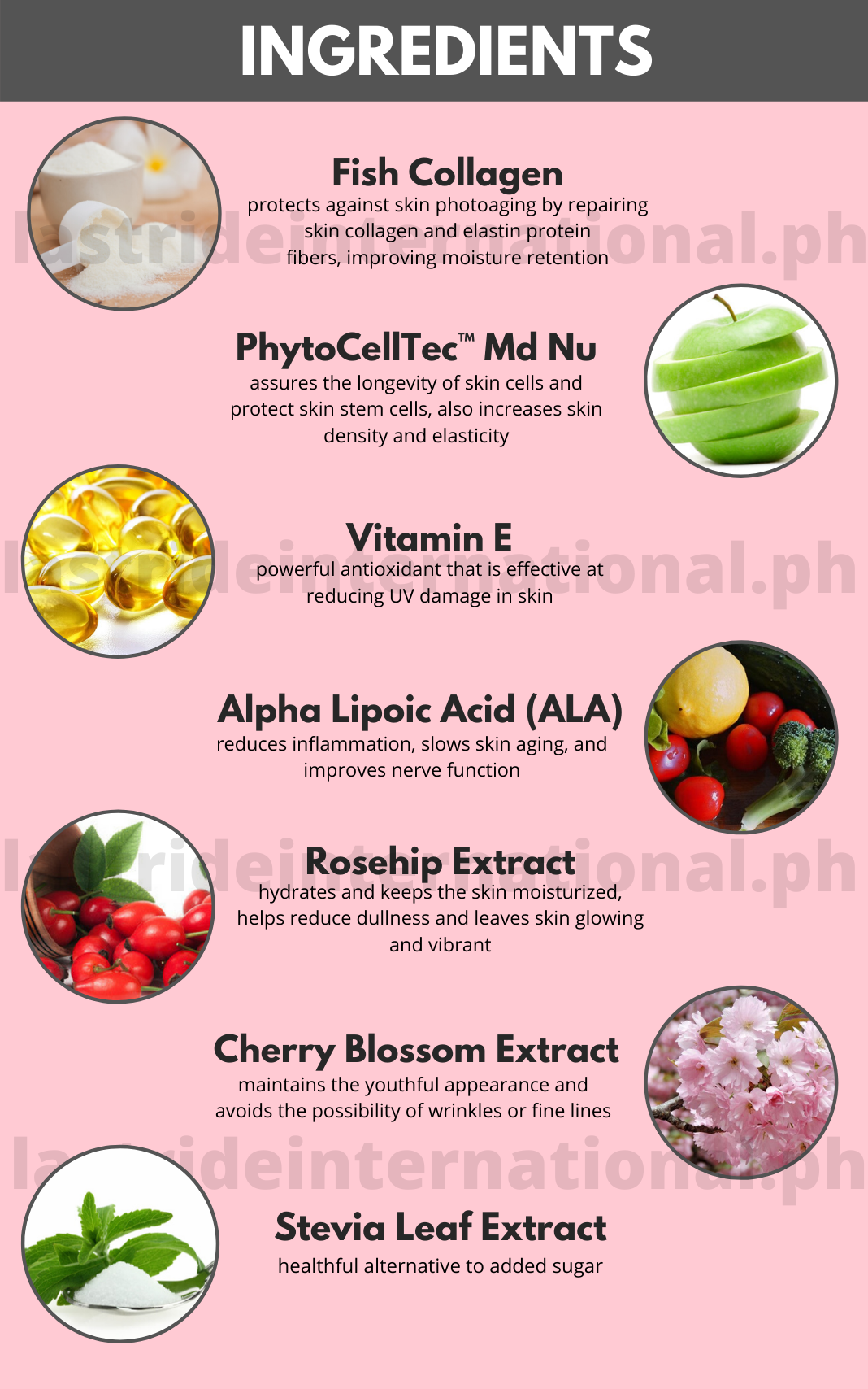 Stem Cell Juice Ingredients | LastRideInternational.ph