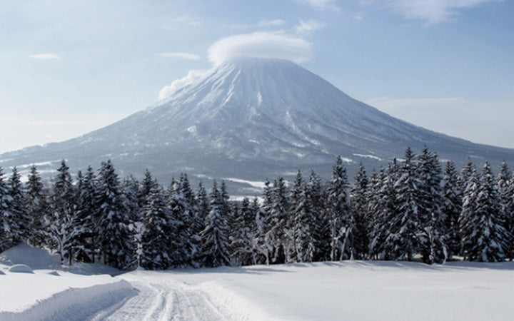 Mana Yoga Retreat - Niseko Ski + Yoga Retreat