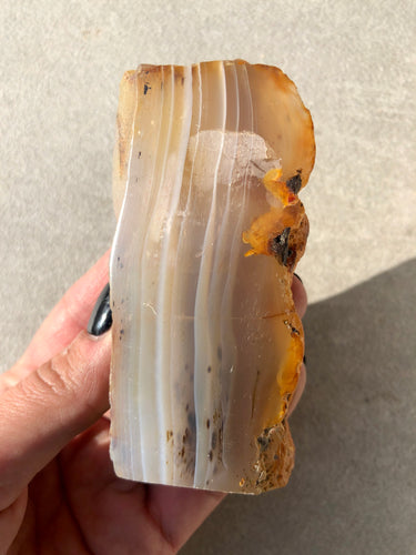 Polished Agate Slice 009