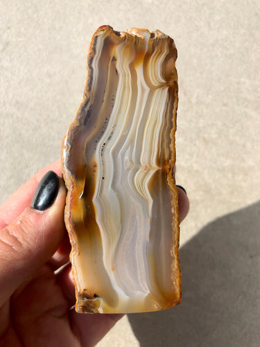 Polished Agate Slice 010