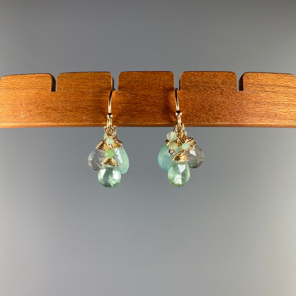 "Gemstone Cluster Earrings in ""Stem"" Mix - Heart of the Home PA"
