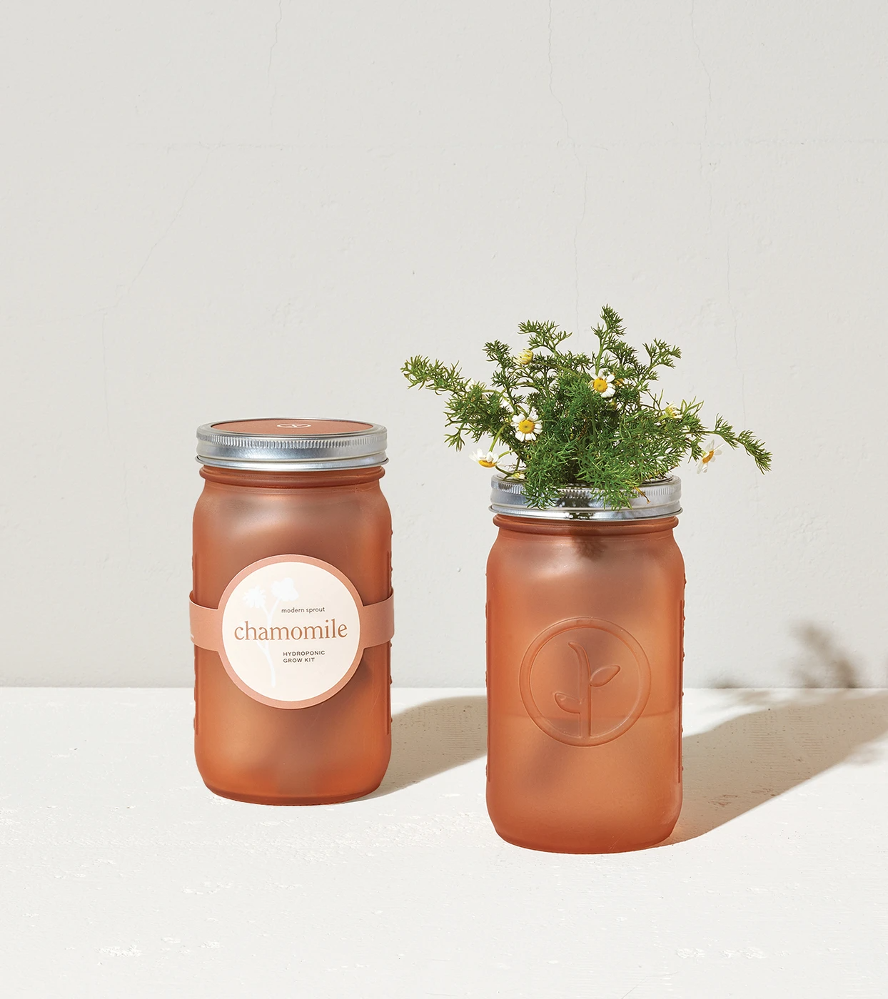 Garden Jar - Chamomile - Heart of the Home PA